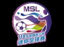 logo_msl_876x651